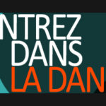 Retour sur l'intervention Danse en Seine à la fête de la danse de Paris le 26 mai 2013